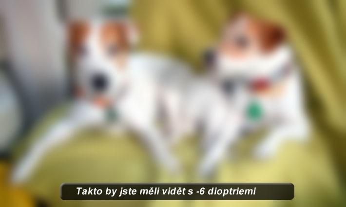 [fotogalerie/jak-vidime/diop-6.jpg]